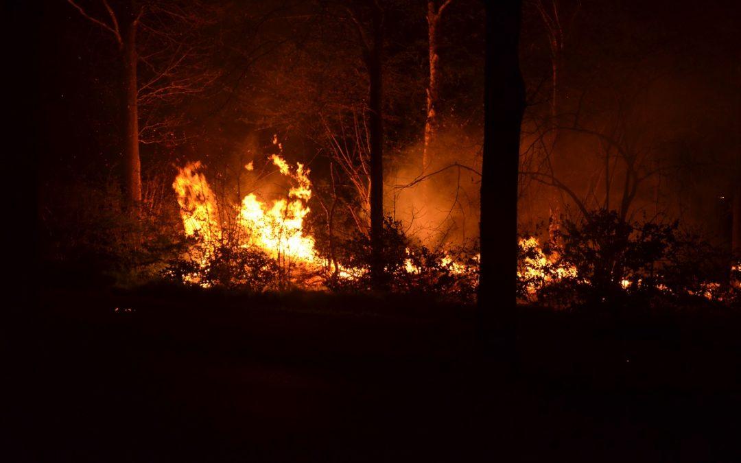 Twee branden langs de Onstwedderweg
